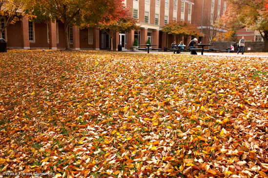 Tribble Hall in the fall